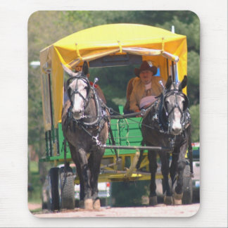 gray mules pulling wagon mouse pad