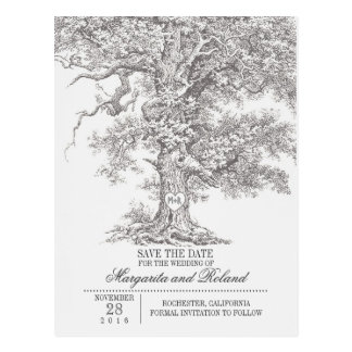 gray old oak tree save the date postcards
