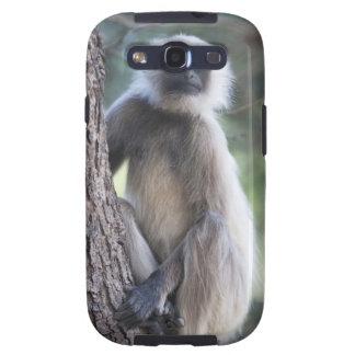Gray or common or Hanuman langur Galaxy S3 Covers