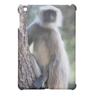 Gray or common or Hanuman langur Cover For The iPad Mini