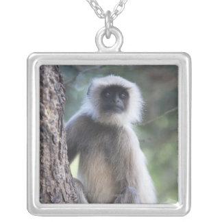 Gray or common or Hanuman langur Custom Jewelry