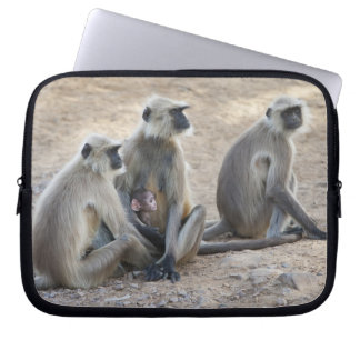 Gray or common or Hanuman langur Semnopithecus Laptop Computer Sleeves