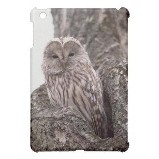 Gray Owl iPad Case