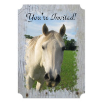 Gray Quarter Horse on Whitewashed Board Card