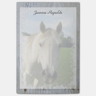 Gray Quarter Horse on Whitewashed Board Post-it Notes