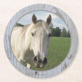 Gray Quarter Horse on Whitewashed Board Round Paper Coaster