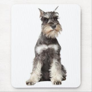 Gray Schnauzer Puppy Dog Mousepad