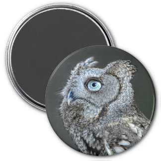 Gray Screech Owl 3 Inch Round Magnet