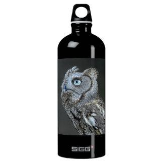 Gray Screech Owl Aluminum Water Bottle