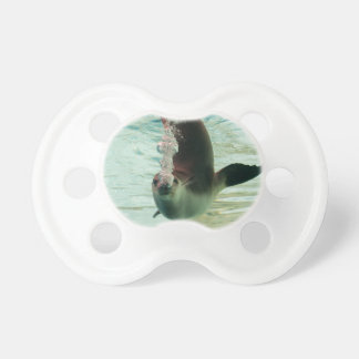 Gray Seal Diving underwater bubbles from nose Pacifier
