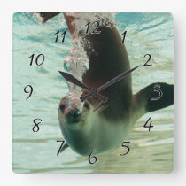 Gray Seal Diving underwater bubbles from nose Square Wall Clock