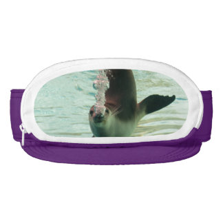 Gray Seal Diving underwater bubbles from nose Visor