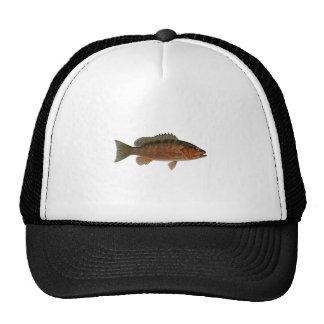 Gray Snapper Logo Mesh Hats