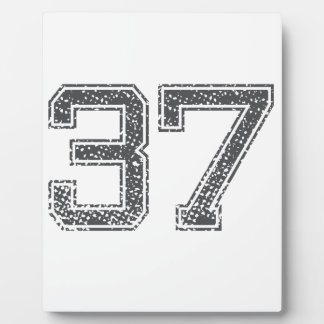 Gray Sports Jersey 37 Display Plaque
