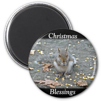 Gray Squirrel Christmas Blessings Series 2 Inch Round Magnet