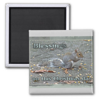 Gray Squirrel Christmas Blessings Series Magnet