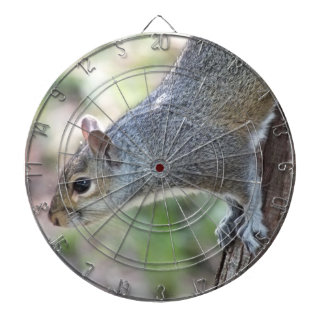 Gray Squirrel Dartboard