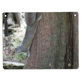 Gray Squirrel Dry Erase Board