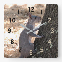 Gray Squirrel Numbered Wall Clock