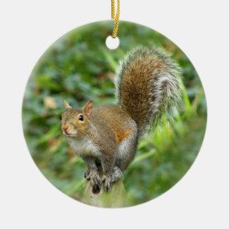 Gray Squirrel Ornament