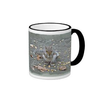 Gray Squirrel Series Coffee Mugs