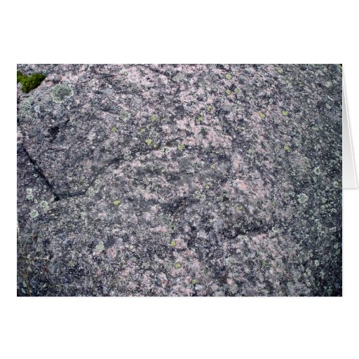 Gray Stone With Moss and Lichens Greeting Card