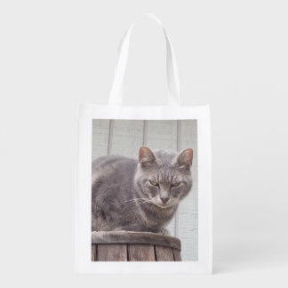 Gray Tabby Cat Grocery Bags