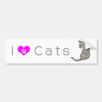 gray tabby cat (yellow eyes) bumper sticker