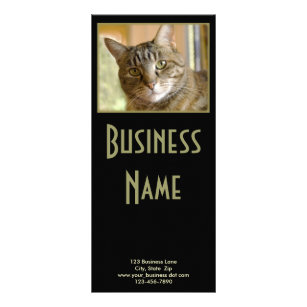 Gray Tabby Close Up Photograph Rack Card