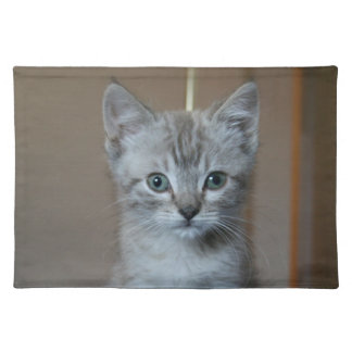 Gray Tabby Kitten Placemats