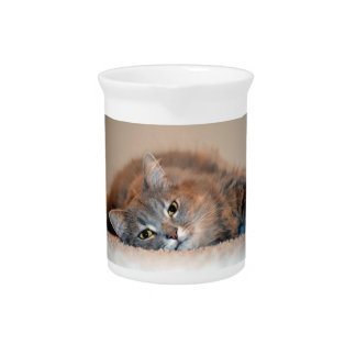 Gray, Tan, White Long-Haired Cat by Shirley Taylor Drink Pitcher