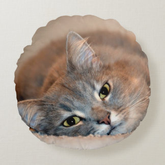 Gray, Tan, White Long-Haired Cat by Shirley Taylor Round Pillow