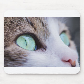 Gray Tiger Cat with Bright Green Eyes Mouse Pad