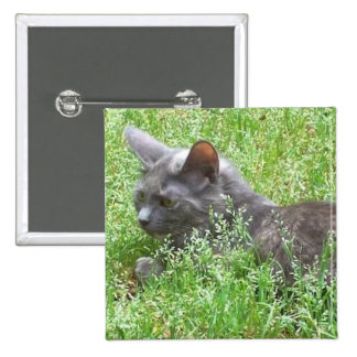 Gray Tortie Cat 2 Inch Square Button