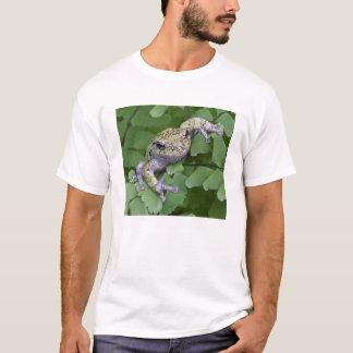 Gray tree frog on fern, Canada T-Shirt
