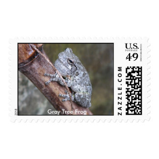 Gray Tree Frog Postage