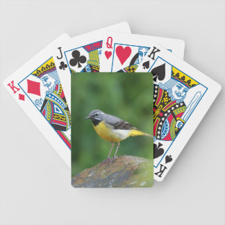 Gray Wagtail - bird Bicycle Playing Cards