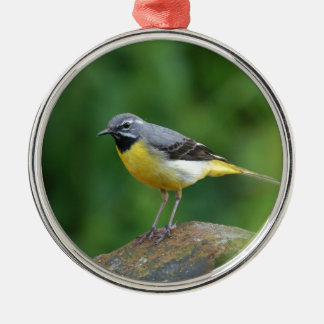 Gray Wagtail - bird Metal Ornament