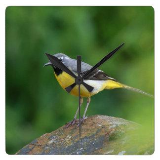 Gray Wagtail - bird Wallclocks