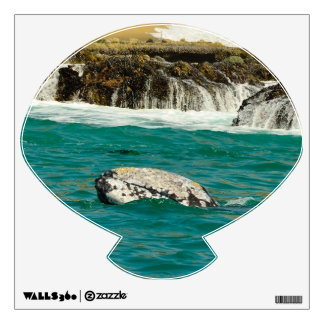 Gray Whale  off beach Wall Decal