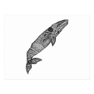 Gray Whale Sketch Postcard