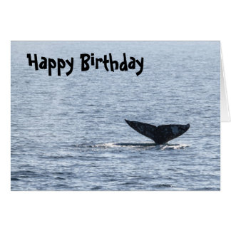 Gray Whale Tail Card