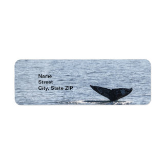 Gray Whale Tail Label