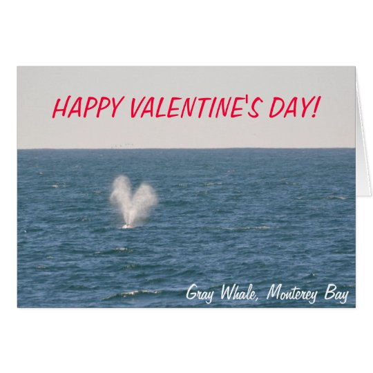 Gray Whale Valentines Day Card