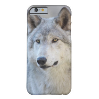 Gray Wolf Barely There iPhone 6 Case