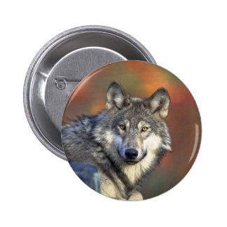 Gray Wolf Button