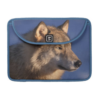 gray wolf, Canis lupus, in the foothills of 2 MacBook Pro Sleeves