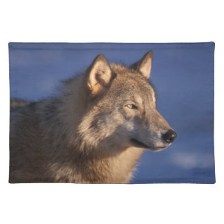 gray wolf, Canis lupus, in the foothills of 2 Cloth Place Mat