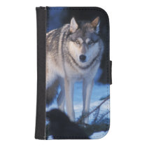 gray wolf, Canis lupus, in the foothills of the 3 Phone Wallet