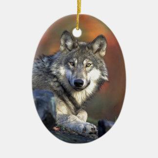 Gray wolf ceramic ornament
